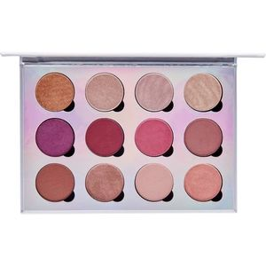 Pur-Extreme Visionary Palette